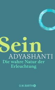 Adyashanti Sein